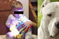 Zvrat v případu Vlastíka (†1), kterého zabil pes: Policie obvinila prvního člověka!
