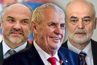 Soud smetl Zemanovo rozhodnutí o nejmenování Ošťádala a Fajta profesory. Překročil pravomoci