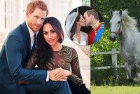 Čechy na královskou svatbu Harryho a Meghan nepozvali. Trapas s koněm stačil