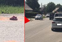 Obrovská tragédie: Mišku (†4) přejel autobus, vlezl pod něj kvůli psovi?