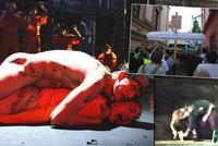 Válka v Brně kvůli znásilnění muslimky Ježíšem: Herečka vytáhla z pochvy českou vlajku, protestanti obsadili jeviště