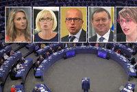 Hrozí internetu cenzura a nadvláda gigantů? 6 Čechů z Bruselu bylo pro kontroverzní návrh
