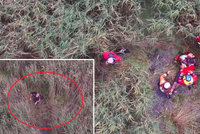 Slavný spisovatel se vydal na procházku a uvízl v bažině: Záchranáři ho našli díky dronu!