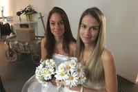 Sňatky homosexuálů podporuje většina Čechů, tvrdí průzkumy. Sněmovní boj se blíží