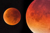 Bible prý skrývá děsivé proroctví: Za měsíc přijde konec světa