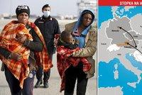Němcům došla s migranty trpělivost, budou kempy u hranic: Co to znamená pro Česko?