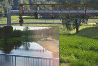 Řeka Jihlava zcela zmizela: Zarostla trávou! Místní nic podobného nepamatují