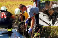 Dalík uvázl v asfaltové louži. Hasiči mu včasným zásahem zachránili život!