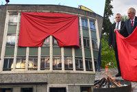 """Rudé trenky v Londýně, galerie vzkazuje: """"Tyhle žádný politik nespálí"""""""
