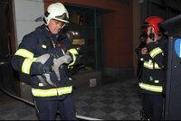 V centru Prahy hořelo. Hasiči evakuovali devět lidí, dvě kočky a králíka