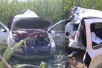 Řidič se na rallye vyboural ve 150 km/hod: Přizabil sebe i manželku, která seděla vedle něj