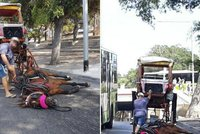 Krvácející kůň ve vedru padl, nedokázal už táhnout kočár. Ochránci: Zastavme trápení