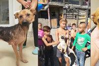 Děti psům uvazují na krk šňůrky a hází je do vody: Ochránci zvířat zachraňují štěňata z romské osady