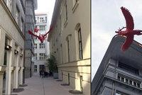 """Nová atrakce v centru Prahy: Turisty uchvacují létající jeleni v tzv. """"uličce sv. Huberta"""""""