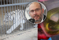 Ředitel Zoo Praha Miroslav Bobek o soukromých chovech: Šelmy nemnožit a nechat dožít… a na plazy licenci!