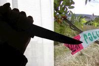 Brutální dvojnásobná vražda na jihu Čech: Zabiják ubodal mámu s babičkou před očima dítěte?