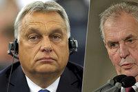 """Zeman se omluví Orbánovi za """"nedůležitou ambasádu"""". A znovu se pustil do Petříčka"""