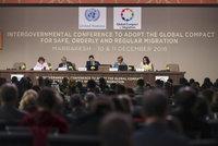 Globální pakt o migraci má v OSN zelenou. I přes odpor Česka, Slovenska či USA