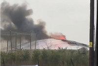 V ohnivém pekle uhořely desítky zvířat. Lidé se skládají zoo na pomoc