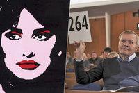 Aukce českého umění pomohla charitě. Handicapovaní získají přes čtyři miliony