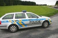 Policie vyšetřuje rvačku na dětském hřišti: Dva chlapci (11) zmlátili vrstevníka pěstmi