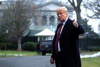 """Trump se rozhodl po 35 dnech """"rozmrazit Ameriku"""": Úřady začnou fungovat, lidé dostanou platy"""