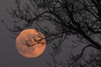 Nádhera na nebi: Zatmění Měsíce pomohla v Česku jasná obloha. A bylo na co koukat