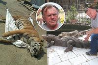 Tygří jatka opět u soudu: Veterináři podepisovali úmrtí, i když zvíře neviděli