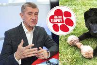 Babiš: Tresty za týrání zvířat musí zpřísnit. Blesk tlapky mají zastání u premiéra