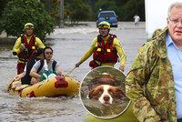 Hadi a krokodýli v ulicích děsí celé město. Povodně v Austrálii mají první oběti