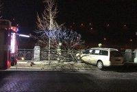 Dva opilci za volantem: Jeden si policii spletl s taxislužbou, druhý boural do stromu