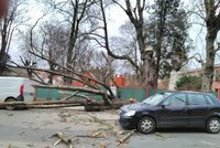 Na jihu Čech vítr vyvracel stromy a zastavil vlaky. Hasiči vyjížděli 50krát