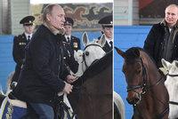 Putin se chtěl před MDŽ předvést na koni, hnědák Váňa ho ale pozlobil