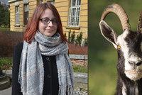 Bára se nakazila brucelózou: Nemoc, kterou u nás lékaři neviděli 60 let! Pila kozí mléko