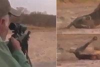 Nechutný lovec trofejí postřelil spícího lva. Zatímco zvíře umíralo, přijímal gratulace