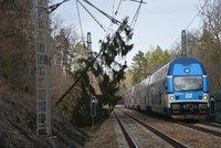 Mezi Čerčany a Senohraby u Prahy nejezdí vlaky. Může za to spadlý strom