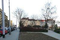 Na Ortenově náměstí vznikne kavárna. Má vyřešit i chybějící veřejné záchodky