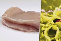 Další salmonelová hrozba v Česku: 500 kilo podezřelých řízků z Polska skončilo na talířích