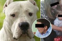 Vlastíčka (†1) zakousl nevychovaný pes: Majitel (31) dostal podmínku!
