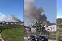 Požár zachvátil les na severním okraji Plzně: Zasahovaly desítky hasičů i vrtulník