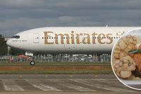 Je libo svíčkovou? Aerolinky Emirates lákají Čechy na jejich pochoutku, některým se moc nezdá
