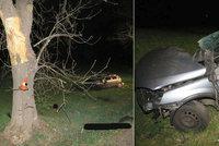 Řidič (†37) na Strakonicku narazil do stromu, našli ho mrtvého desítky metrů od vozu