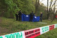 Smrt na Klatovsku: V rybníku utonul muž (†70)