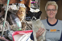 """Je hladovění psů bezdomovců mýtus? Ptali jsme se odbornice z neziskovky """"Psí život"""""""
