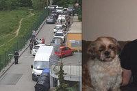 Šokující zvrat v případu ubodaného Tomáše (†16), který bránil Juditu (16): Policie prý pracuje s novou verzí!