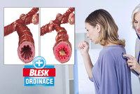 Astmatiků přibývá, nemoc trápí 800 tisíc Čechů! Otestujte se! Hrozí i vám?