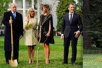 """Trumpův a Macronův strom """"přátelství"""" zmizel. Listnáč v Bílém domě uschnul"""