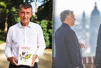 """Babiš vyměnil """"motýle"""" za Orbána. A za """"fňukání"""" schytal tvrdý direkt od Haška"""