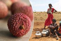 100 dětí zabilo toxické ovoce. Dalších 78 lidí zemřelo kvůli extrémnímu vedru v Indii