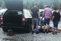 Dvě fenky nechala majitelka v zamčeném autě několik hodin. Jedna zemřela, druhá bojuje o život